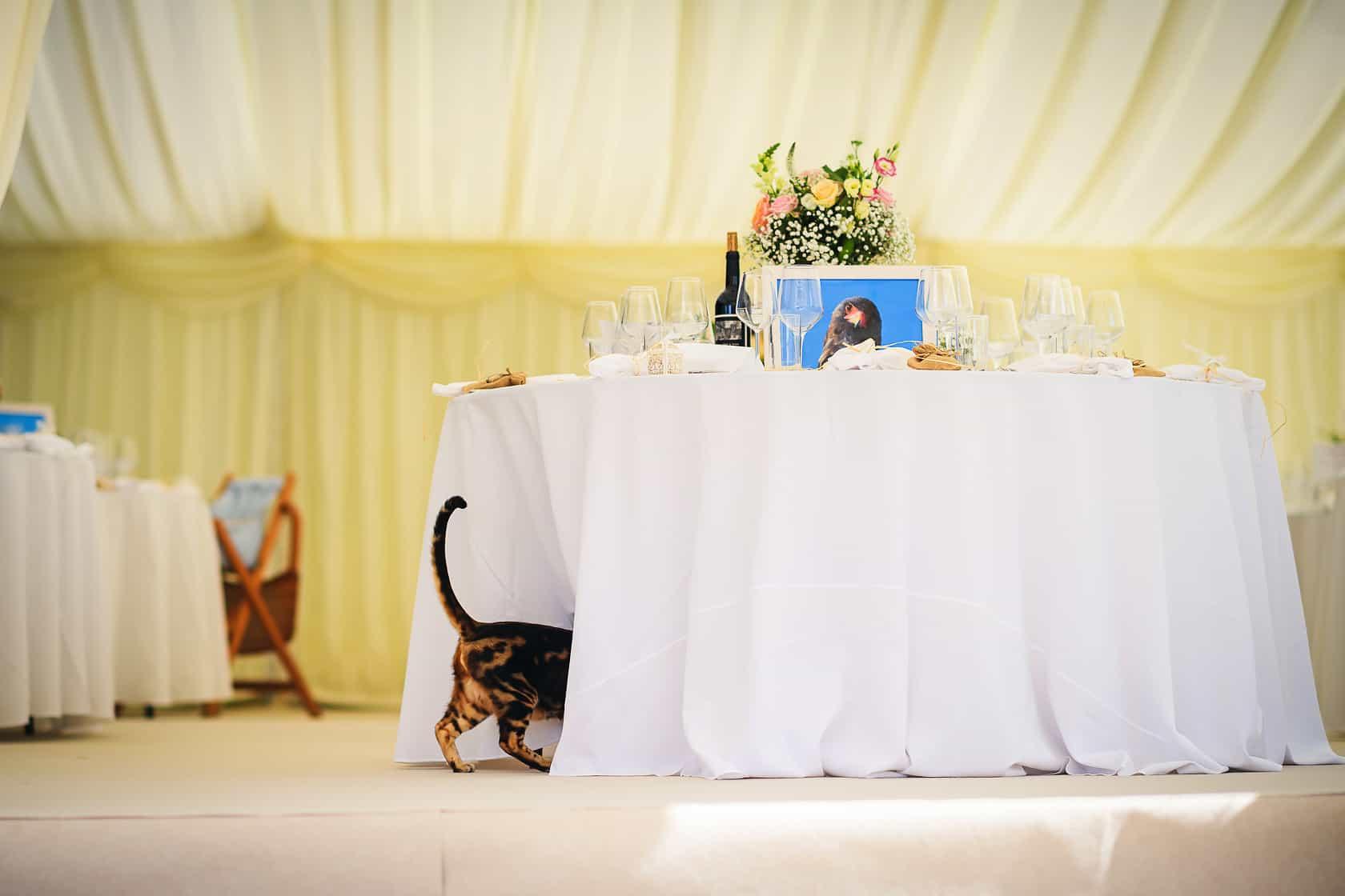 Best_Wedding_Photography_2018_Wedding-Photographer-Essex-and-London_011