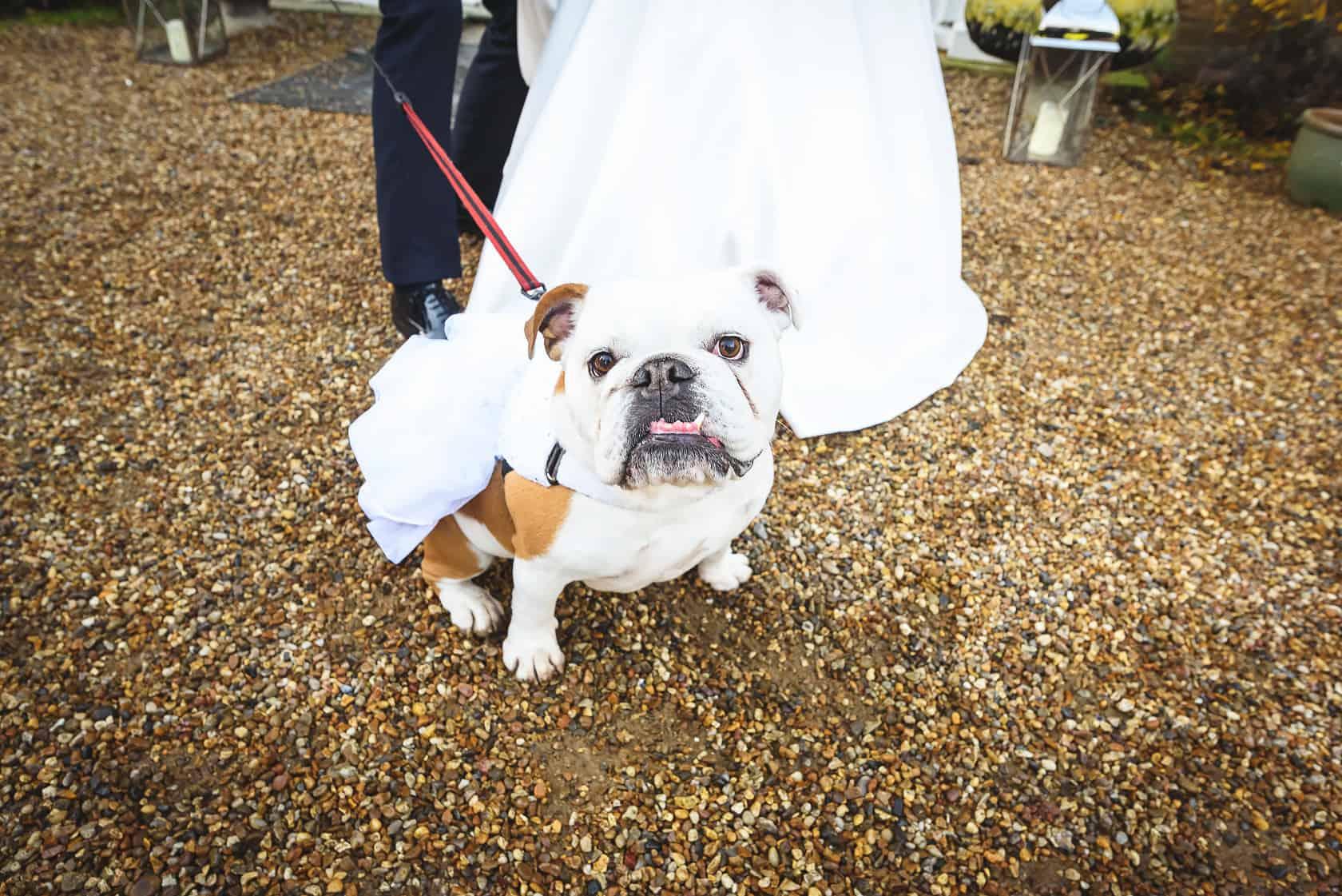 Best_Wedding_Photography_2018_Wedding-Photographer-Essex-and-London_029